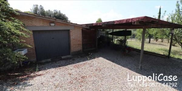 Appartamento in vendita a Siena, Con giardino, 143 mq - Foto 4