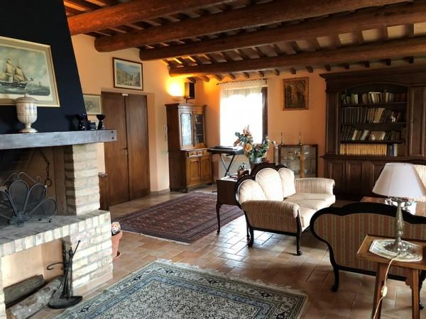 Rustico/Casale in vendita a Perugia, Torgiano, Con giardino, 400 mq