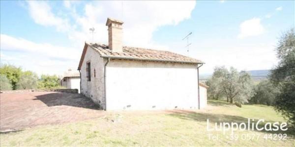 Villa in vendita a Sovicille, Con giardino, 450 mq - Foto 14