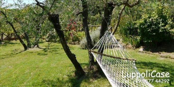 Villa in vendita a Sovicille, Con giardino, 180 mq - Foto 44