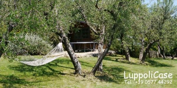 Villa in vendita a Sovicille, Con giardino, 180 mq - Foto 43
