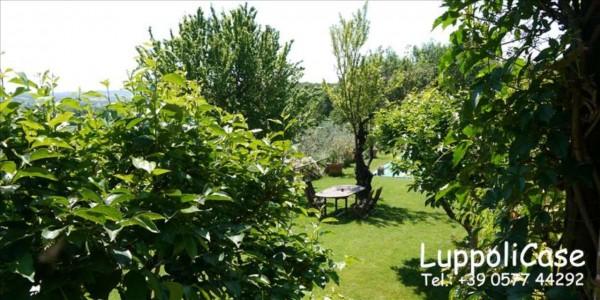 Villa in vendita a Sovicille, Con giardino, 180 mq - Foto 34