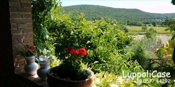Villa in vendita a Sovicille, Con giardino, 180 mq - Foto 47