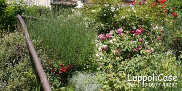 Villa in vendita a Sovicille, Con giardino, 180 mq - Foto 41