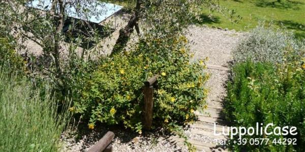 Villa in vendita a Sovicille, Con giardino, 180 mq - Foto 31