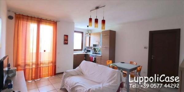 Appartamento in affitto a Castelnuovo Berardenga, Arredato, 70 mq
