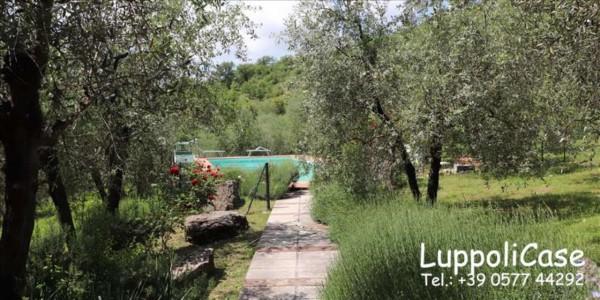 Appartamento in affitto a Gaiole in Chianti, Con giardino, 240 mq