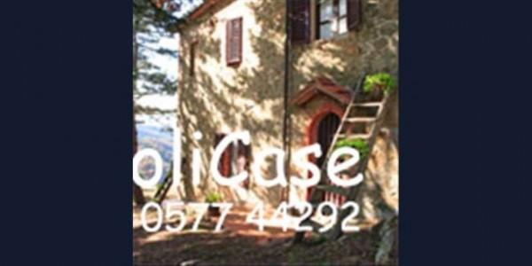 Villa in vendita a Gaiole in Chianti, Con giardino, 400 mq - Foto 19