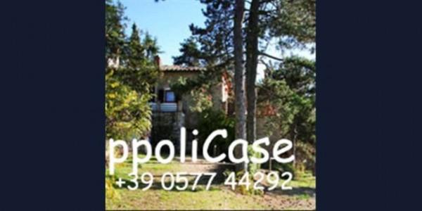 Villa in vendita a Gaiole in Chianti, Con giardino, 400 mq - Foto 11