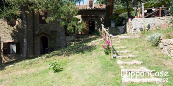 Villa in vendita a Gaiole in Chianti, Con giardino, 400 mq - Foto 15