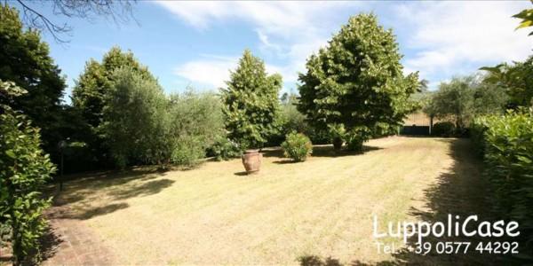 Appartamento in affitto a Siena, Arredato, con giardino, 180 mq - Foto 7