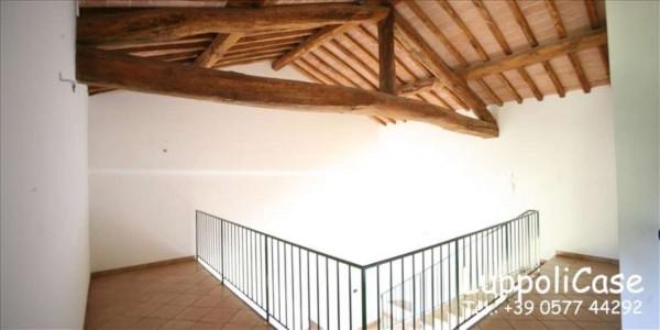Appartamento in affitto a Siena, Arredato, con giardino, 180 mq - Foto 14