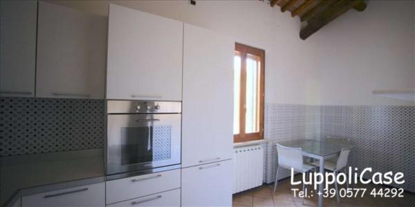 Appartamento in affitto a Siena, Arredato, con giardino, 180 mq - Foto 12