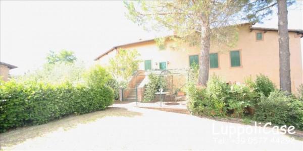 Appartamento in affitto a Siena, Arredato, con giardino, 180 mq - Foto 29