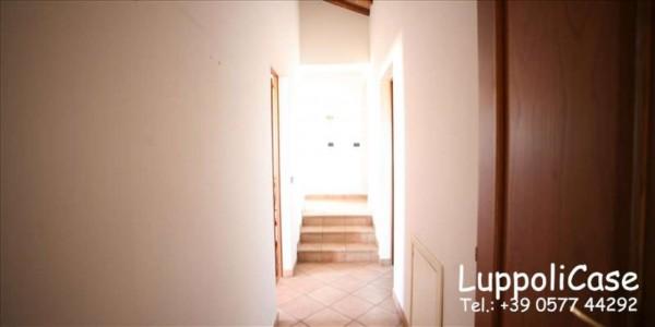 Appartamento in affitto a Siena, Arredato, con giardino, 180 mq - Foto 16