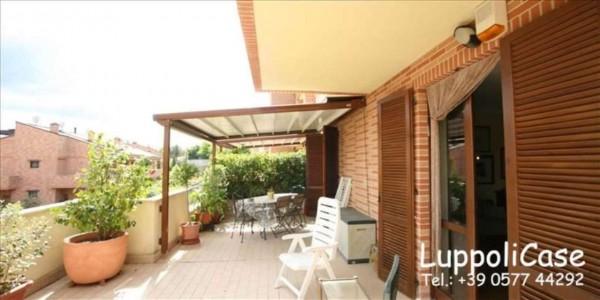 Appartamento in vendita a Castelnuovo Berardenga, Arredato, con giardino, 135 mq