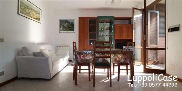 Appartamento in vendita a Sovicille, 50 mq