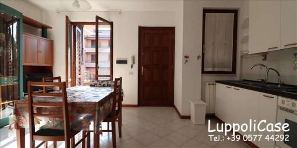 Appartamento in vendita a Sovicille, 50 mq - Foto 8