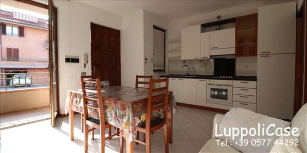 Appartamento in vendita a Sovicille, 50 mq - Foto 7