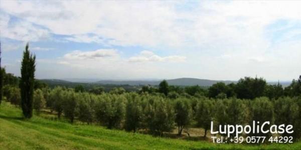 Villa in vendita a Sovicille, Con giardino, 550 mq - Foto 6