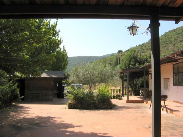 Locale Commerciale  in vendita a Capestrano, Periferia, Con giardino, 470 mq - Foto 12