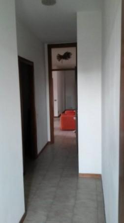 Appartamento in affitto a Cesate, Arredato, con giardino, 110 mq - Foto 5