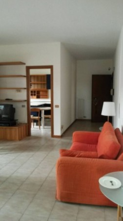 Appartamento in affitto a Cesate, Arredato, con giardino, 110 mq - Foto 15