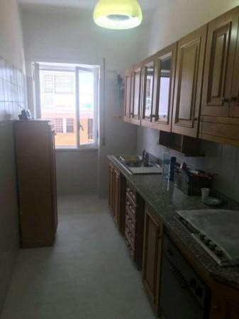 Appartamento in affitto a Roma, Monteverde Nuovo, 70 mq