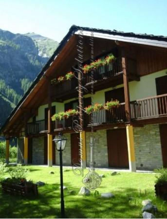 Rustico/Casale in vendita a Gressoney-La-Trinitè, Gressoney, Arredato, con giardino, 33 mq