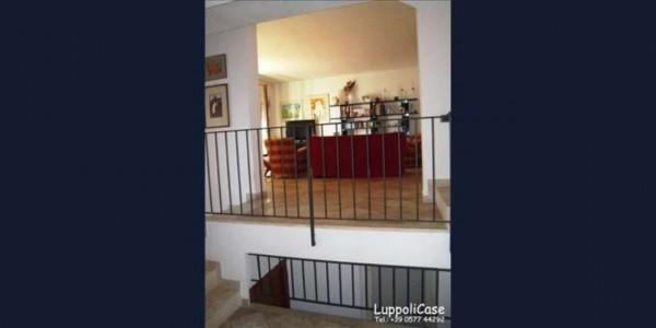 Villa in vendita a Castelnuovo Berardenga, Con giardino, 270 mq - Foto 9