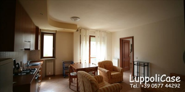 Appartamento in affitto a Siena, 50 mq