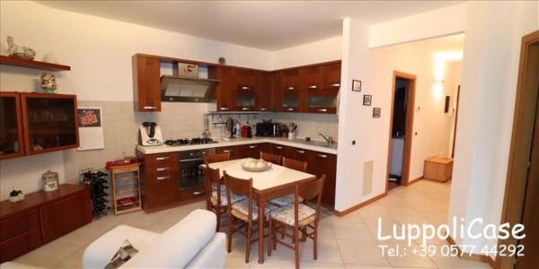 Appartamento in affitto a Siena, 75 mq