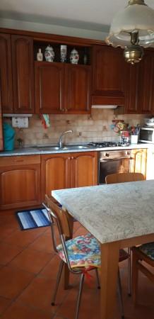 Appartamento in vendita a Padova, Voltabarozzo, Con giardino, 175 mq
