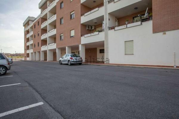 Appartamento in vendita a Roma, Colle Degli Abeti - Ponte Di Nona, 60 mq - Foto 3