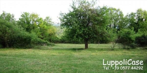 Villa in vendita a Sovicille, Con giardino, 800 mq - Foto 9