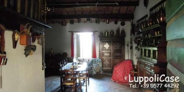 Villa in vendita a Sovicille, Con giardino, 800 mq - Foto 3