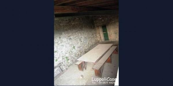 Villa in vendita a Sovicille, Con giardino, 800 mq - Foto 15