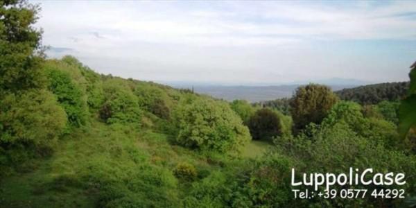 Villa in vendita a Sovicille, Con giardino, 800 mq - Foto 13