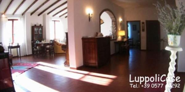 Villa in vendita a Castelnuovo Berardenga, Con giardino, 282 mq