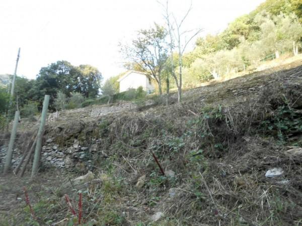 Casa indipendente in vendita a Rapallo, Adiacenze Via Carcassoni, Con giardino, 70 mq - Foto 34