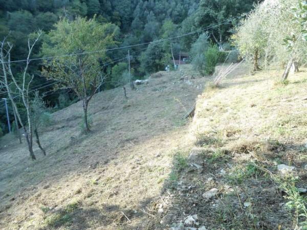 Casa indipendente in vendita a Rapallo, Adiacenze Via Carcassoni, Con giardino, 70 mq - Foto 18