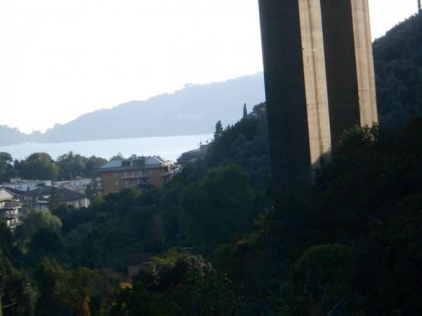 Casa indipendente in vendita a Rapallo, Adiacenze Via Carcassoni, Con giardino, 70 mq - Foto 4