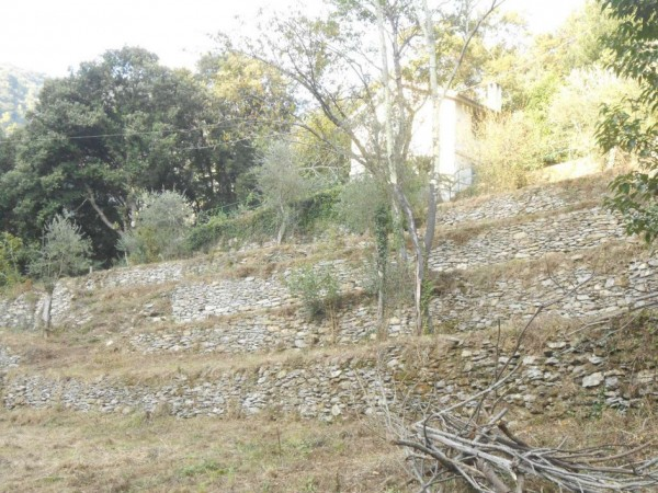 Casa indipendente in vendita a Rapallo, Adiacenze Via Carcassoni, Con giardino, 70 mq - Foto 32