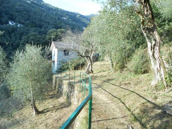 Casa indipendente in vendita a Rapallo, Adiacenze Via Carcassoni, Con giardino, 70 mq - Foto 33