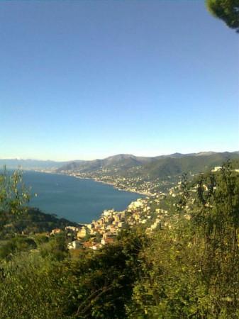 Appartamento in vendita a Genova, Sampierdarena, 70 mq - Foto 7