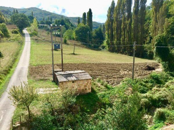 Casa indipendente in vendita a Pietralunga, Con giardino, 450 mq - Foto 2
