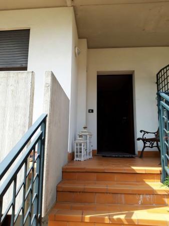 Appartamento in vendita a Due Carrare, Terradura, Con giardino, 120 mq