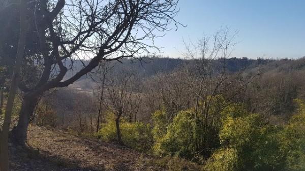 Rustico/Casale in vendita a Asti, Serravalle, Con giardino, 150 mq - Foto 20