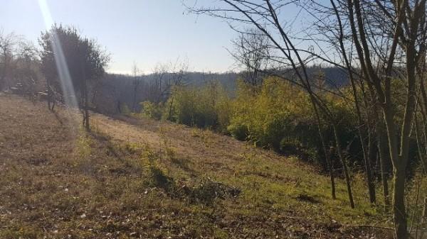 Rustico/Casale in vendita a Asti, Serravalle, Con giardino, 150 mq - Foto 23
