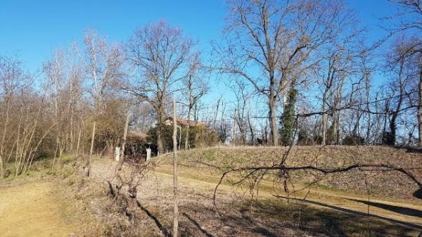 Rustico/Casale in vendita a Asti, Serravalle, Con giardino, 150 mq - Foto 13